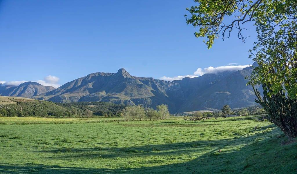 Garden Route Zuid-Afrika - Swellendam