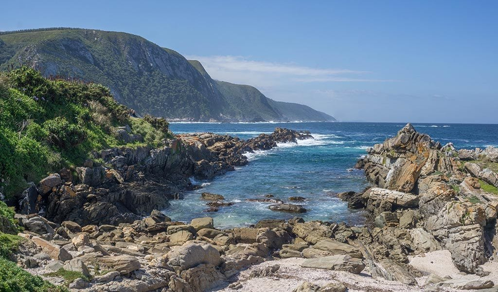 Zuid-Afrika live