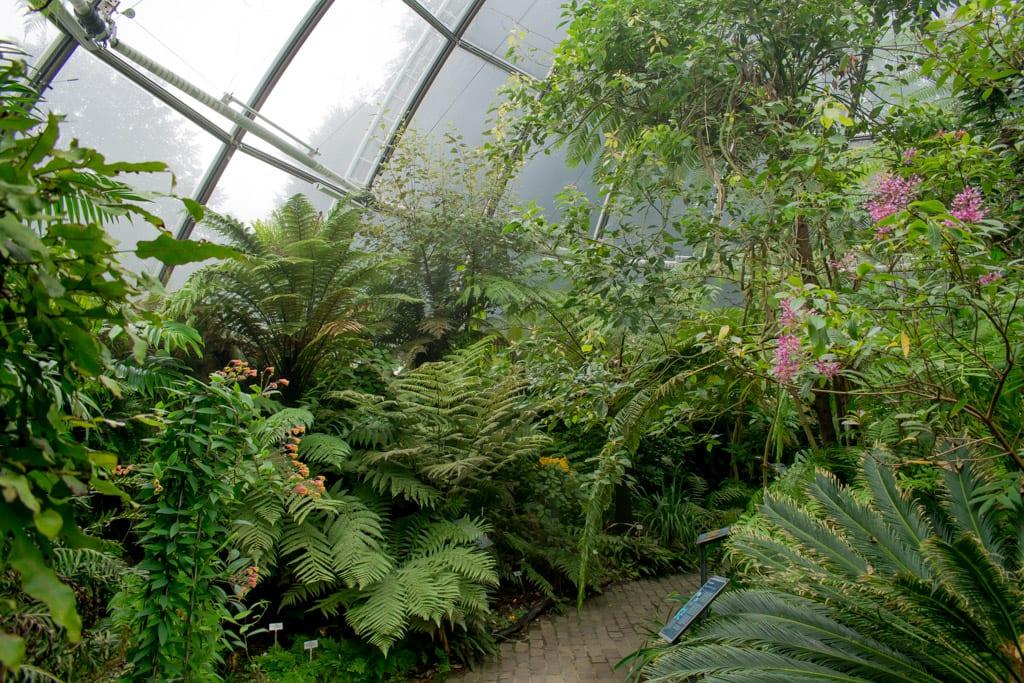 Kas bij de Botanische Tuin van Zürich