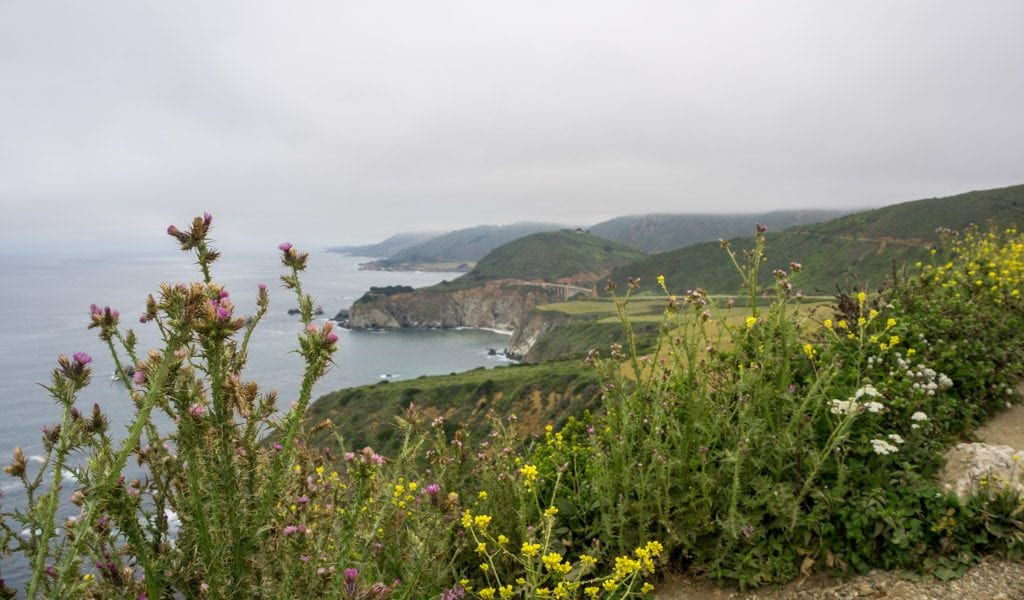 Highway 1 - Hurricane Viewpoint