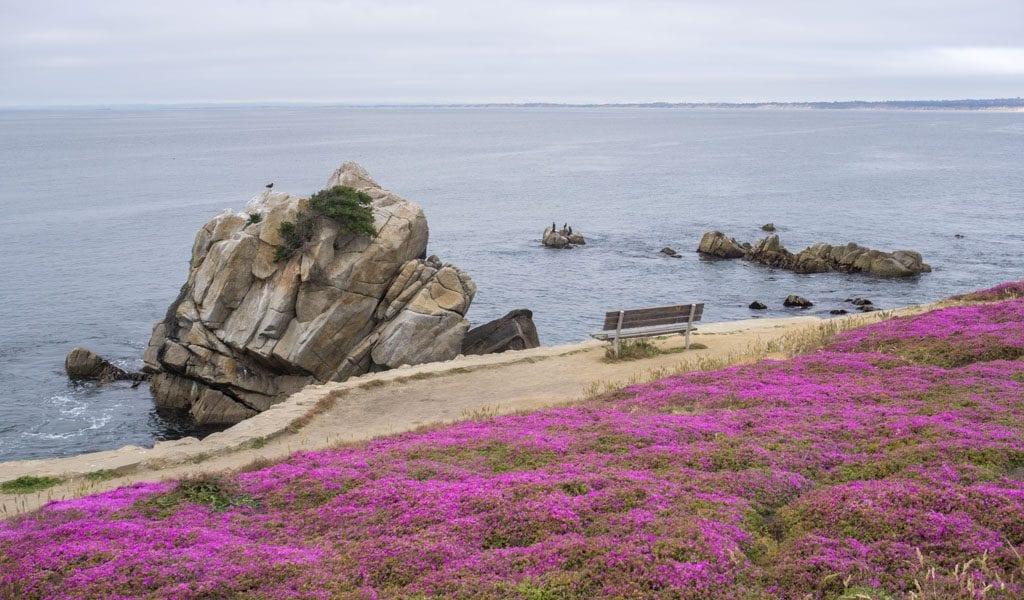 Highway 1 - Monterey