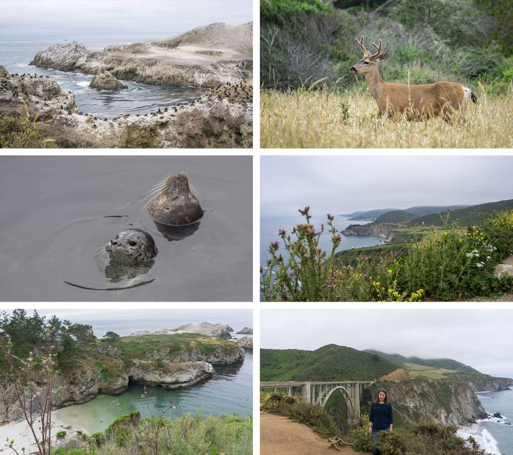 Rondreis West-Amerika - Point Lobos & Bixby Bridge