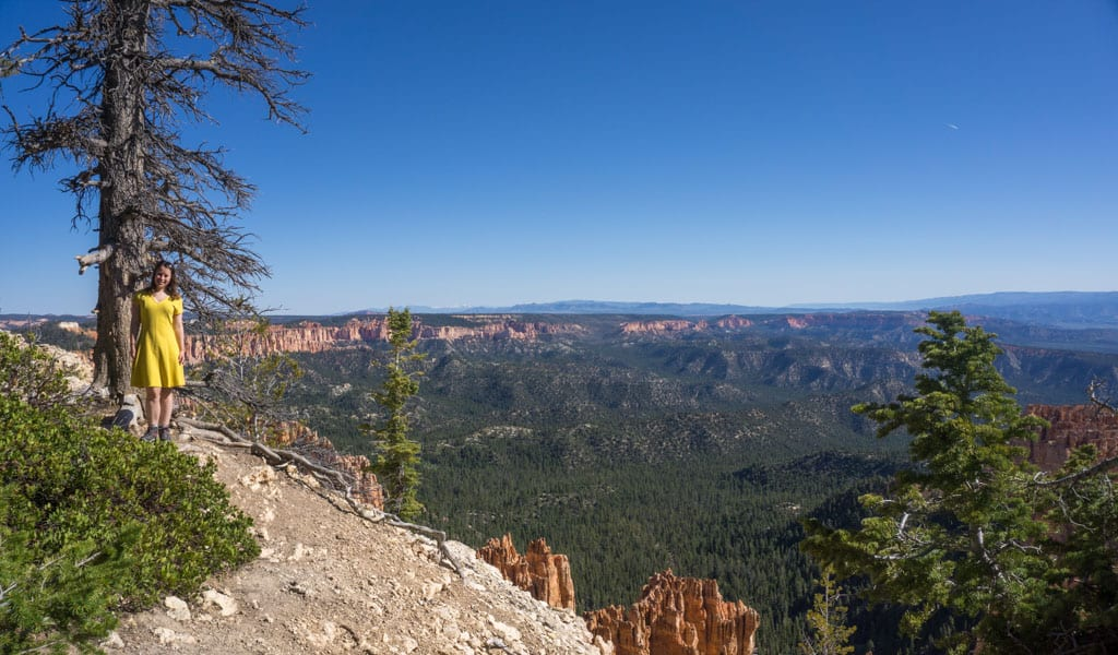 rainbow point bryce