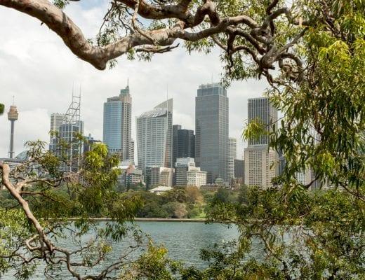 Uitzicht op de binnenstad van Sydney