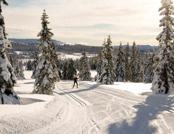 Cross Country Skiing in Noorwegen
