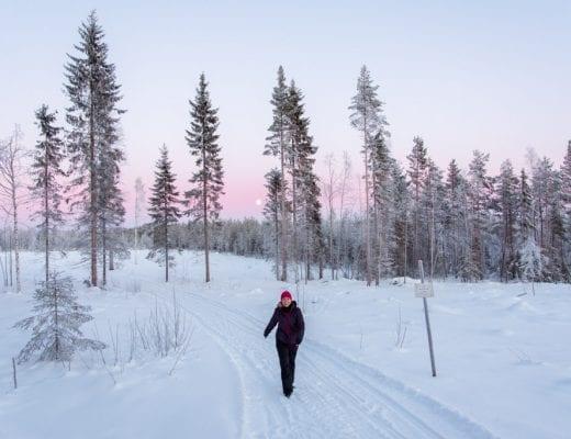 Zweeds Lapland met NoSun