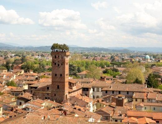 Guinigi Toren in Lucca